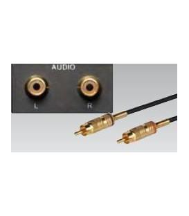 Eingänge L / R für Stereo Cinch Anschluss