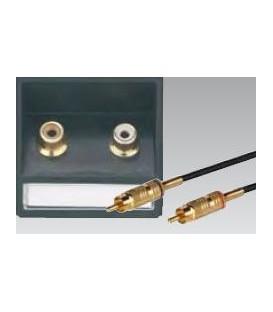 Eingänge L / R für Stereo Cinch Anschluss mit Schrägauslass