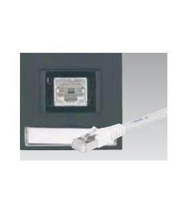 Datenplatte mit einer Telefon und Datenbuchse